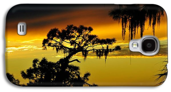 Central Florida Sunset Galaxy S4 Case