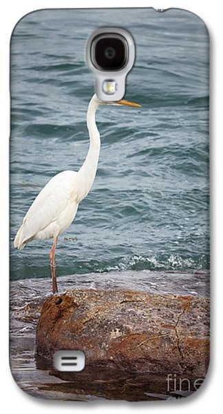 Great White Heron Galaxy S4 Case by Elena Elisseeva
