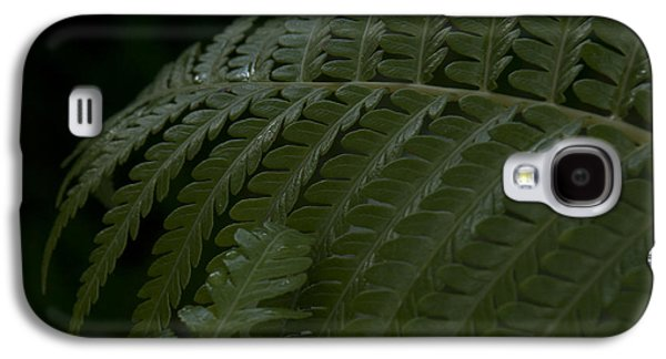 Hapuu Pulu Hawaiian Tree Fern  Galaxy S4 Case