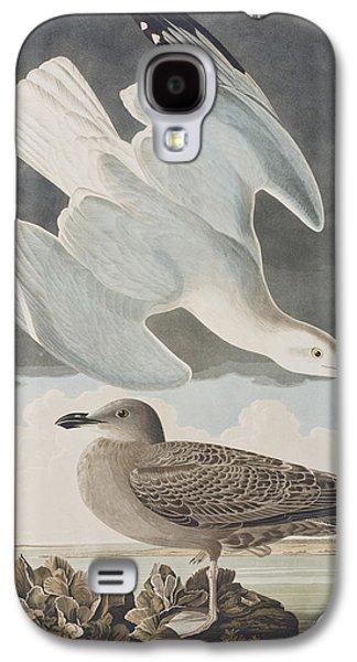 Herring Gull Galaxy S4 Case