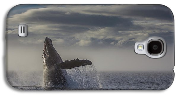Humback Whale Breaching In Chatham Strait Galaxy S4 Case