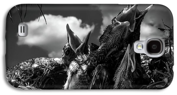 Hungry Galaxy S4 Case by Gerhard Gellinger