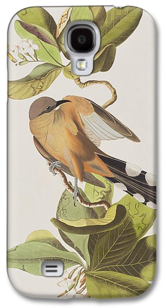 Mangrove Cuckoo Galaxy S4 Case by John James Audubon