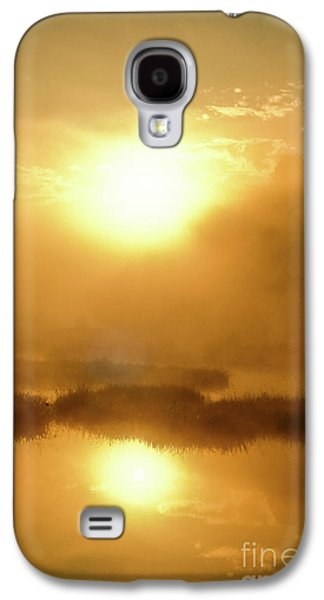 Misty Gold Galaxy S4 Case