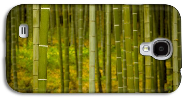 Mystical Bamboo Galaxy S4 Case by Sebastian Musial