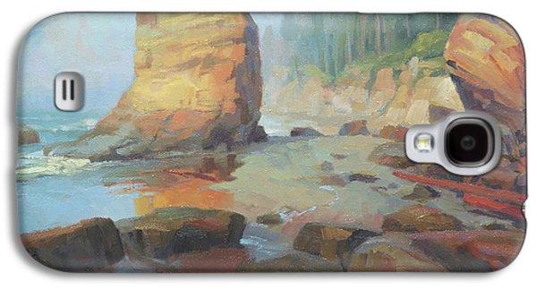 Otter Galaxy S4 Case - Otter Rock Beach by Steve Henderson