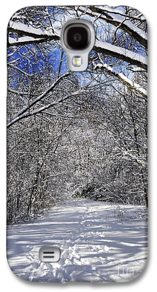 Path In Winter Forest Galaxy S4 Case by Elena Elisseeva