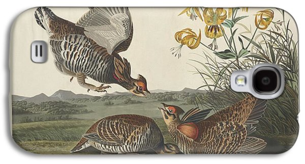 Pinnated Grouse Galaxy S4 Case by Dreyer Wildlife Print Collections