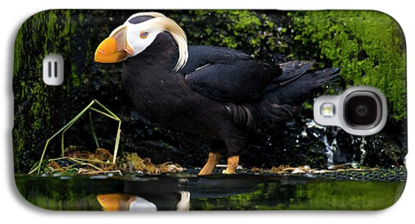 Puffin Reflected Galaxy S4 Case
