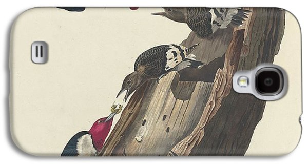 Red-headed Woodpecker Galaxy S4 Case
