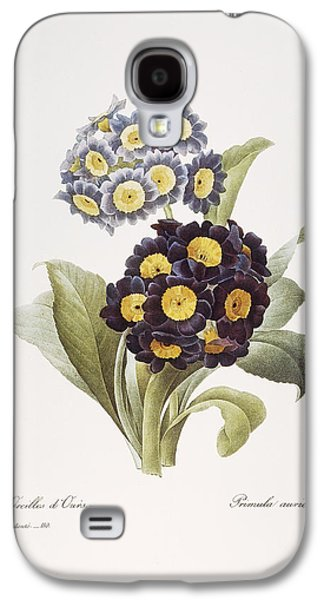 1833 Galaxy S4 Cases - Redoute: Auricula, 1833 Galaxy S4 Case by Granger