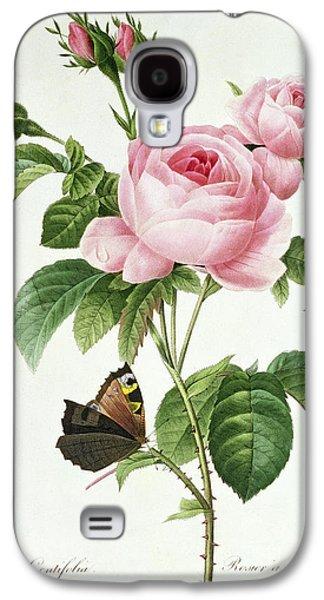 Rosa Centifolia Galaxy S4 Case by Pierre Joseph Redoute