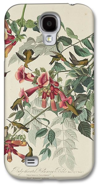 Ruby-throated Hummingbird Galaxy S4 Case by Dreyer Wildlife Print Collections