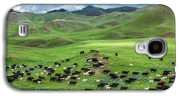 Cow Galaxy S4 Case - Salt And Pepper Pasture by Todd Klassy