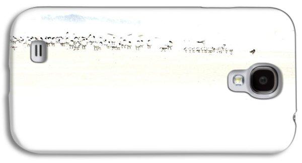High Key Shorebirds Galaxy S4 Case