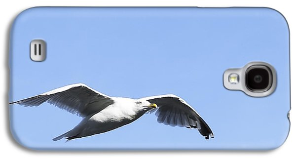 Seagull Galaxy S4 Case by Svetlana Sewell