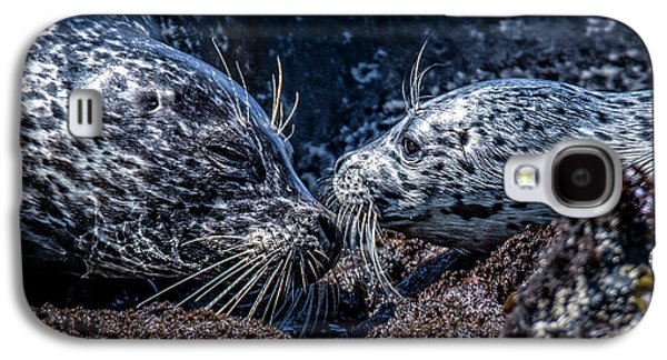 Seal Pup With Mom Galaxy S4 Case