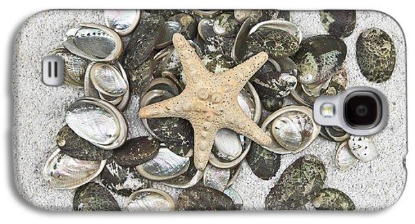 Concept Photographs Galaxy S4 Cases - Seashells Galaxy S4 Case by Joana Kruse