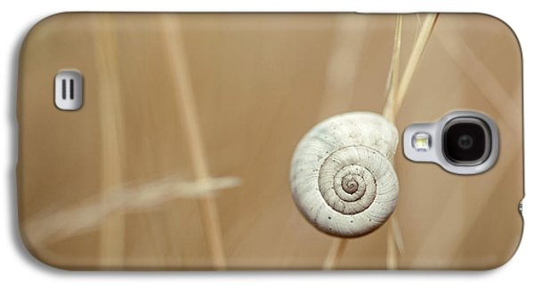 Snail On Autum Grass Blade Galaxy S4 Case by Nailia Schwarz