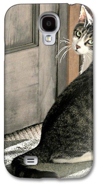 The Back Door Galaxy S4 Case by Diana Angstadt