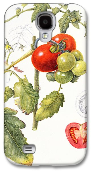 Tomatoes Galaxy S4 Case
