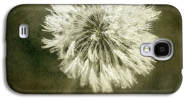 Water Drops On Dandelion Flower Galaxy S4 Case by Scott Norris