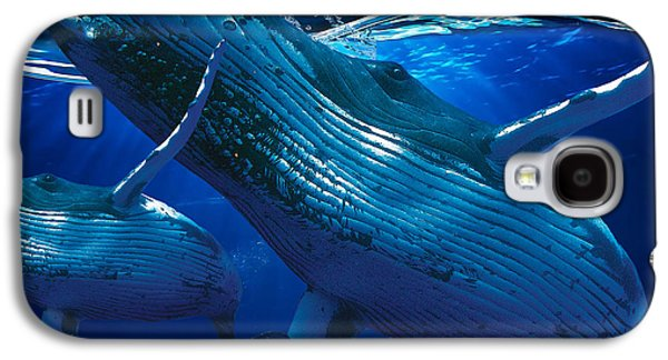 Whale Watching Art Galaxy S4 Case