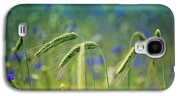 Wheat And Corn Flowers Galaxy S4 Case by Nailia Schwarz