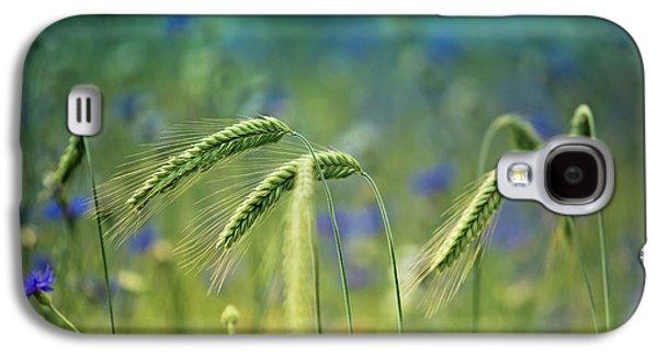 Wheat And Corn Flowers Galaxy S4 Case by Nailia Schwarz