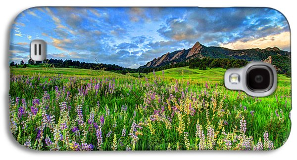 Wildflower Wonder Galaxy S4 Case