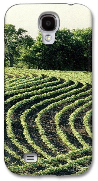 Young Soybean Plants Galaxy S4 Case by Inga Spence
