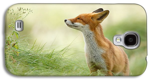 Zen Fox Series - Zen Fox Galaxy S4 Case by Roeselien Raimond