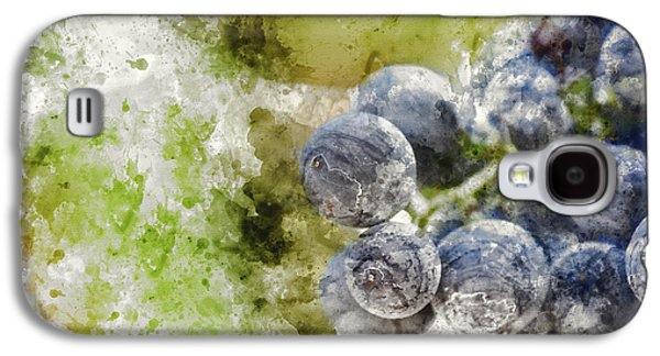 Red Grapes On The Vine Galaxy S4 Case by Brandon Bourdages