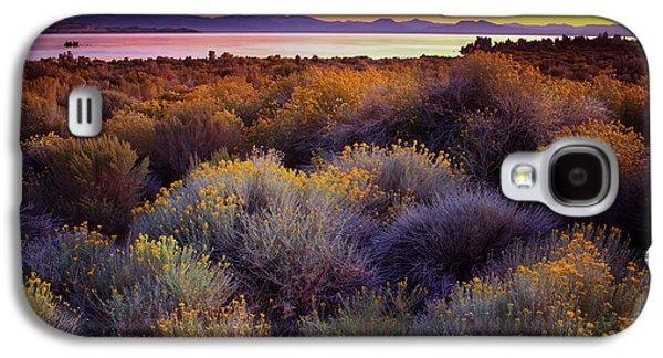 Mono Lake California Galaxy S4 Case by Adonis Villanueva