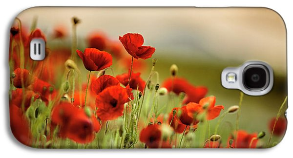 Summer Poppy Meadow Galaxy S4 Case by Nailia Schwarz