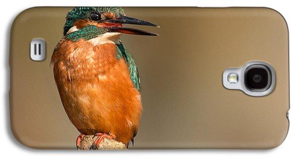 Kingfisher Galaxy S4 Case -   Kingfisher by Ian Hufton