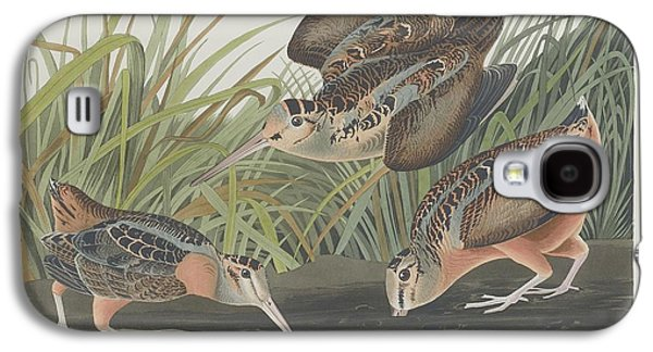 American Woodcock Galaxy S4 Case by Rob Dreyer