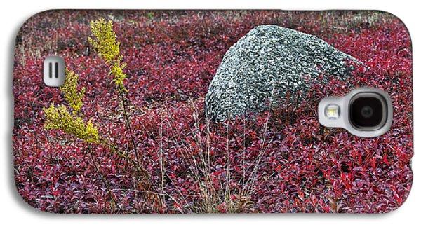 Autumn Blueberry Field Galaxy S4 Case by John Greim