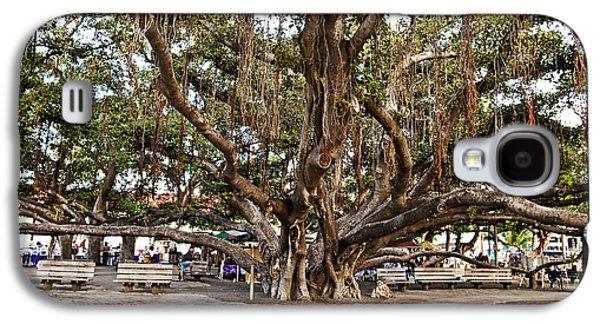 Pellegrin Photographs Galaxy S4 Cases - Banyan Tree Galaxy S4 Case by Scott Pellegrin