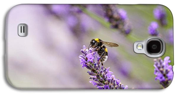 Bumblebee And Lavender Galaxy S4 Case by Nailia Schwarz