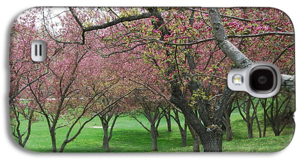 Cherry Blossoms Galaxy S4 Cases - Cherry Blossom Galaxy S4 Case by Trish Hale