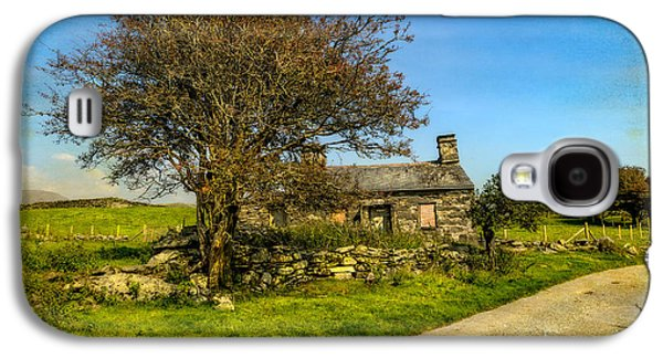 Cottage Ruin Galaxy S4 Case by Adrian Evans