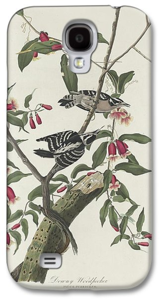 Downy Woodpecker Galaxy S4 Case