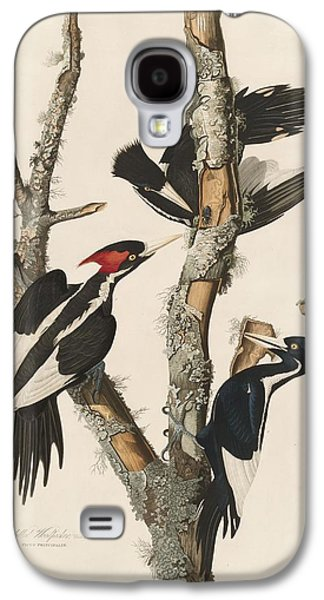 Ivory-billed Woodpecker Galaxy S4 Case by Rob Dreyer