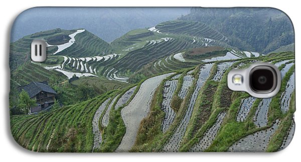 Longsheng Rice Terraces Galaxy S4 Case