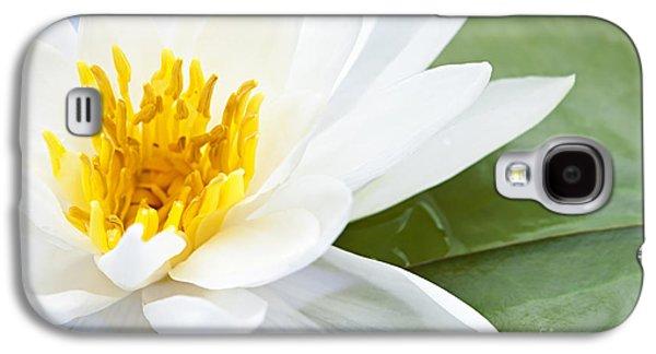Lotus Flower Galaxy S4 Case by Elena Elisseeva