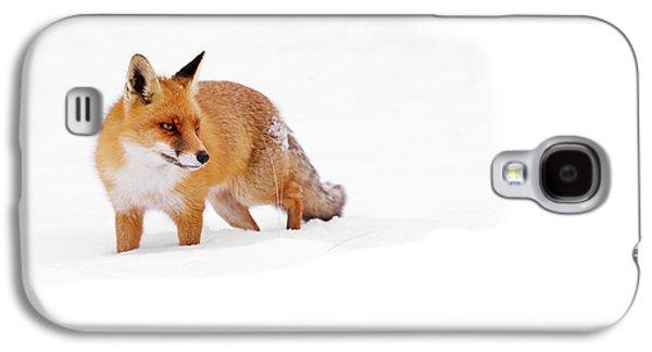 Red Fox In A White World Galaxy S4 Case