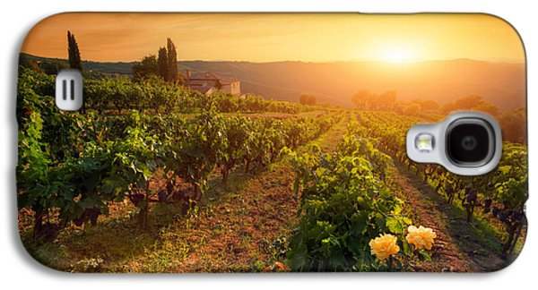Ripe Wine Grapes On Vines In Tuscany, Italy Galaxy S4 Case by Michal Bednarek