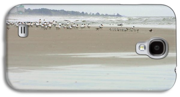 Seabirds On Hilton Head Shoreline Galaxy S4 Case