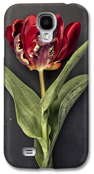 Tulip Galaxy S4 Case - Tulip by Nailia Schwarz